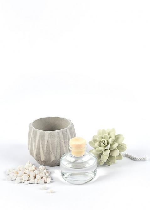Аромадиффузор Mercury Aroma Garden Flor в виде суккулента, фото